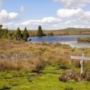 L'Overland Track :  randonnée au coeur de la Tasmanie